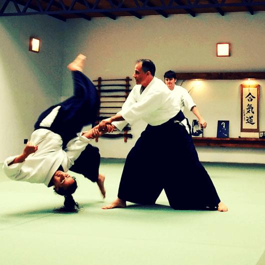Ukemi: El arte de caer y levantarse
